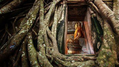 วัดบางกุ้ง ชมโบสถ์ปรกโพธิ์แห่งอันซีนไทยแลนด์ จ.สมุทรสงคราม