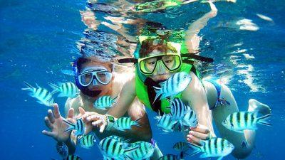 ดำน้ำ ขึ้นชื่อในเมืองไทย แพลนไว้เผื่อไปท่องเที่ยวหน้าร้อนปีหน้า!